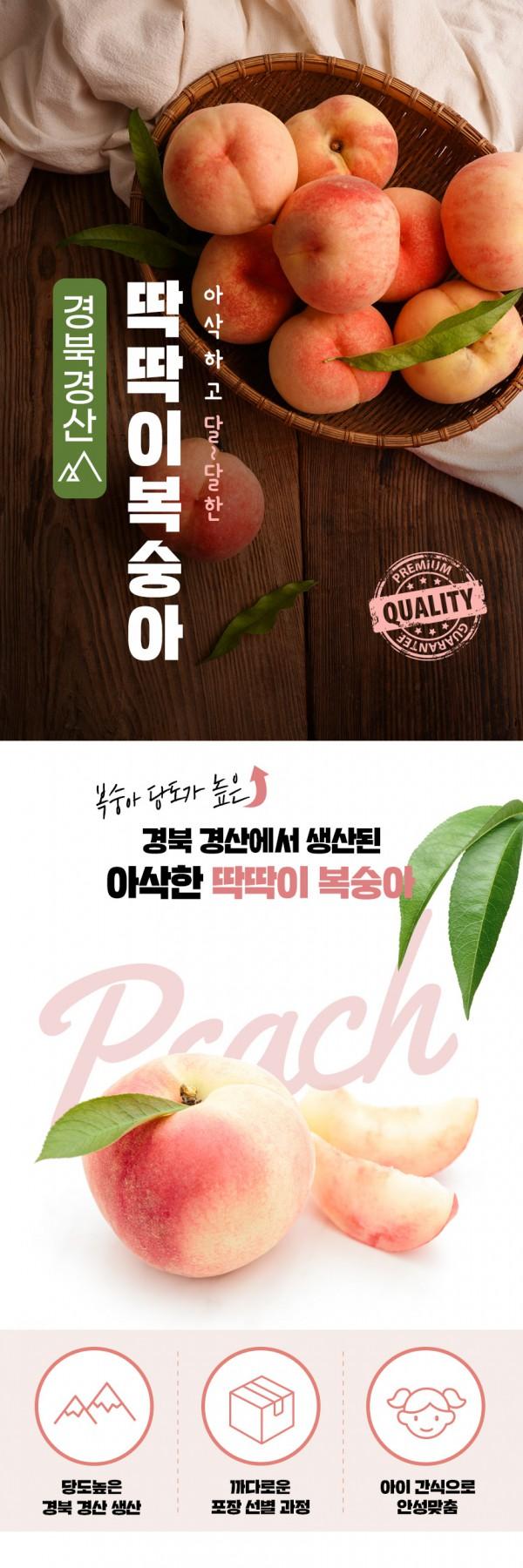 [T011]과일 복숭아 상세페이지 + 제품촬영